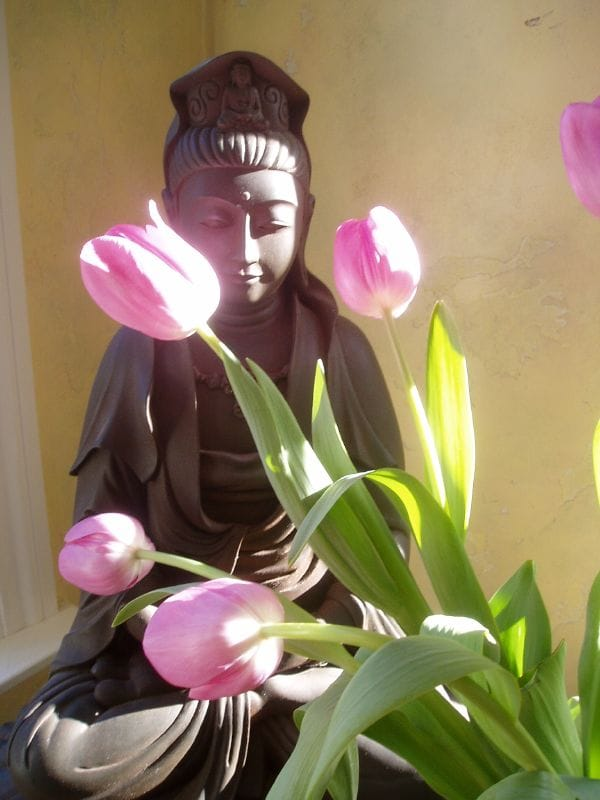 Buddhist statue of Quan Yin behind pink tulips.