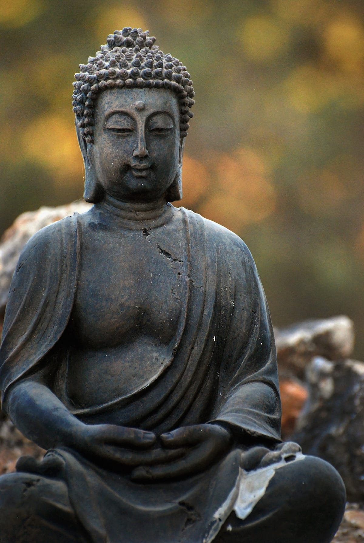 Mahayana, Way of the Bodhisattva, Vajrayana / Tibetan Buddhism, Sakyong Mipham, Shambhala Sun, Lion's Roar, Buddhism