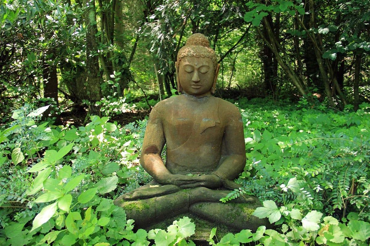 Meditation, Sakyong Mipham, Self, Shambhala Sun, Suffering, Vajrayana / Tibetan Buddhism, Lion's Roar, Buddhism