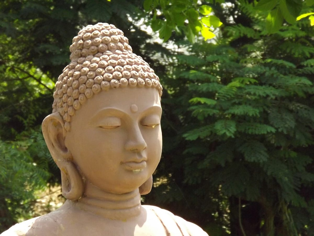 No-self, Sakyong Mipham, Self, Shambhala Sun, Lion's Roar, Buddhism