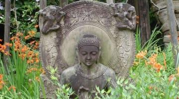 The Buddha's Bravery