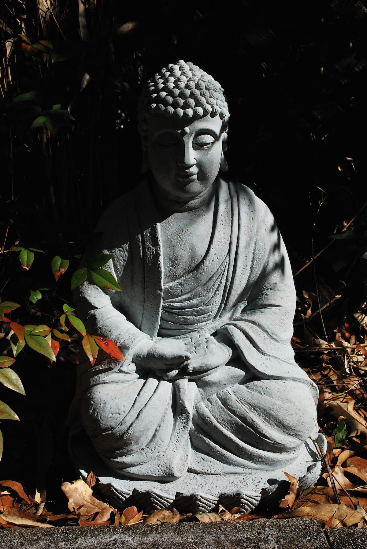 Buddhism Lion's Roar Four Noble Truths Mahayana Shambhala Sun Theravada Tulku Thondup Rinpoche Vajrayana / Tibetan Buddhism