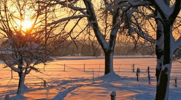 Winter Blue Sylvia Boorstein Buddhism