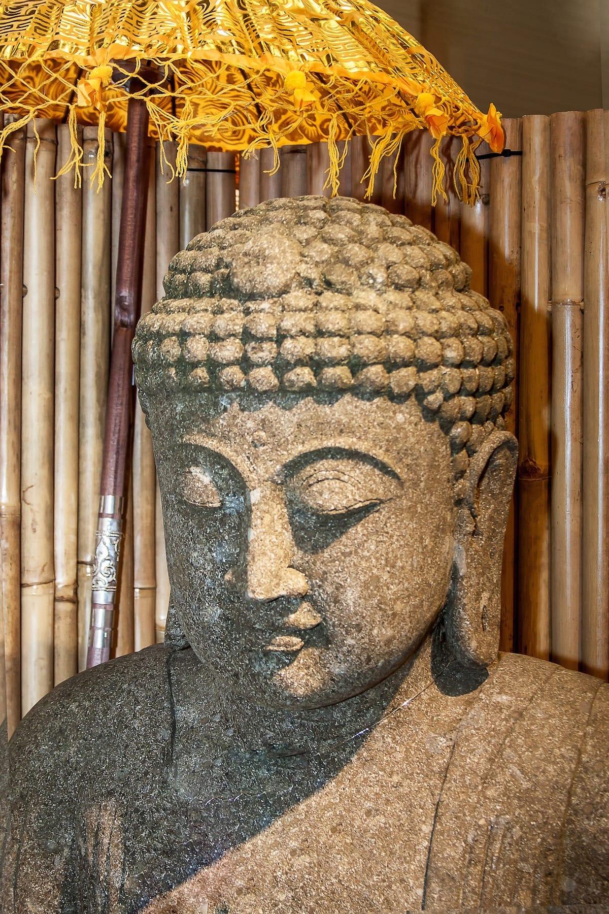 Self, Vajrayana / Tibetan Buddhism, Meditation, Sakyong Mipham,, Shambhala Sun, Lion's Roar, Buddhism