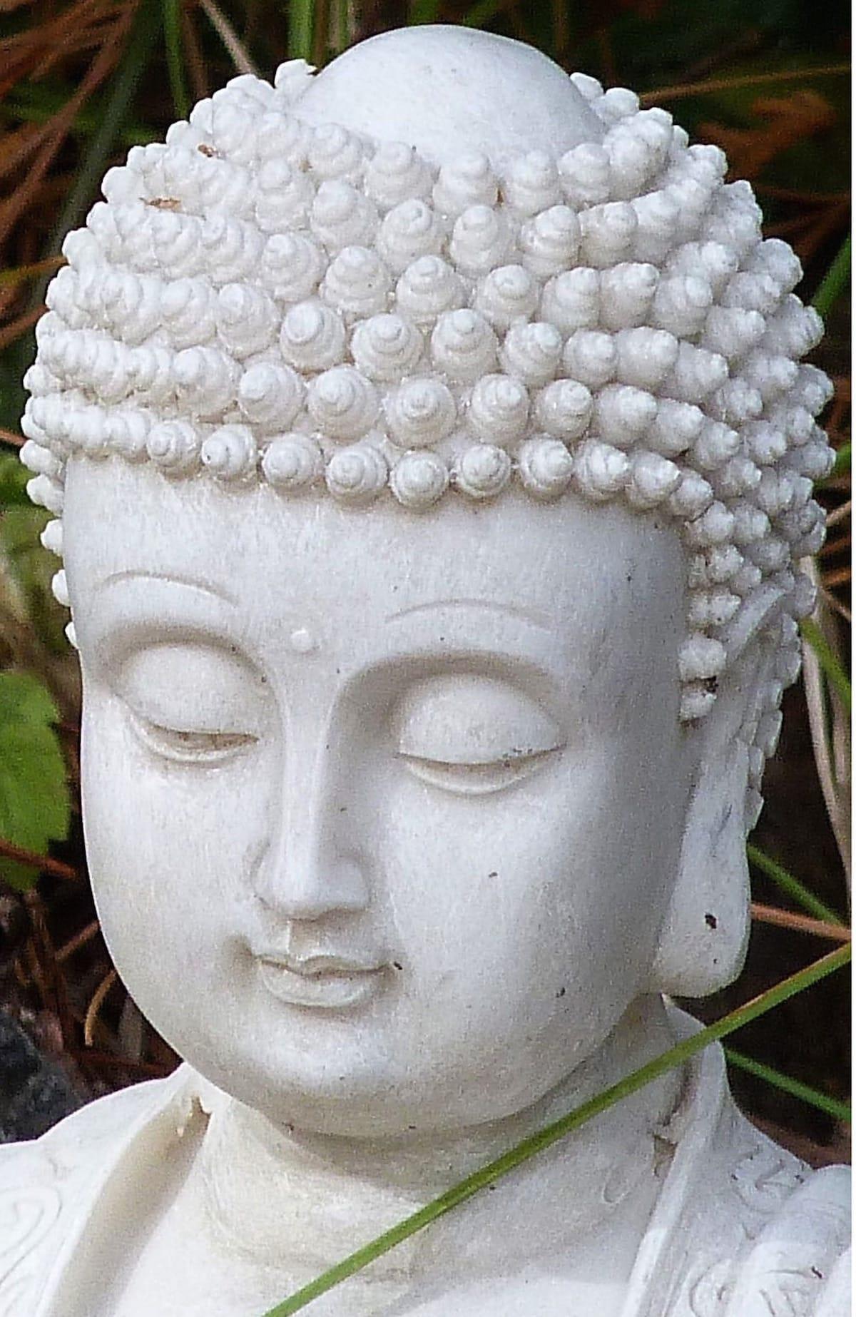 Meditation, Peace, Sakyong Mipham, Vajrayana / Tibetan Buddhism, Shambhala Sun, Lion's Roar, Buddhism
