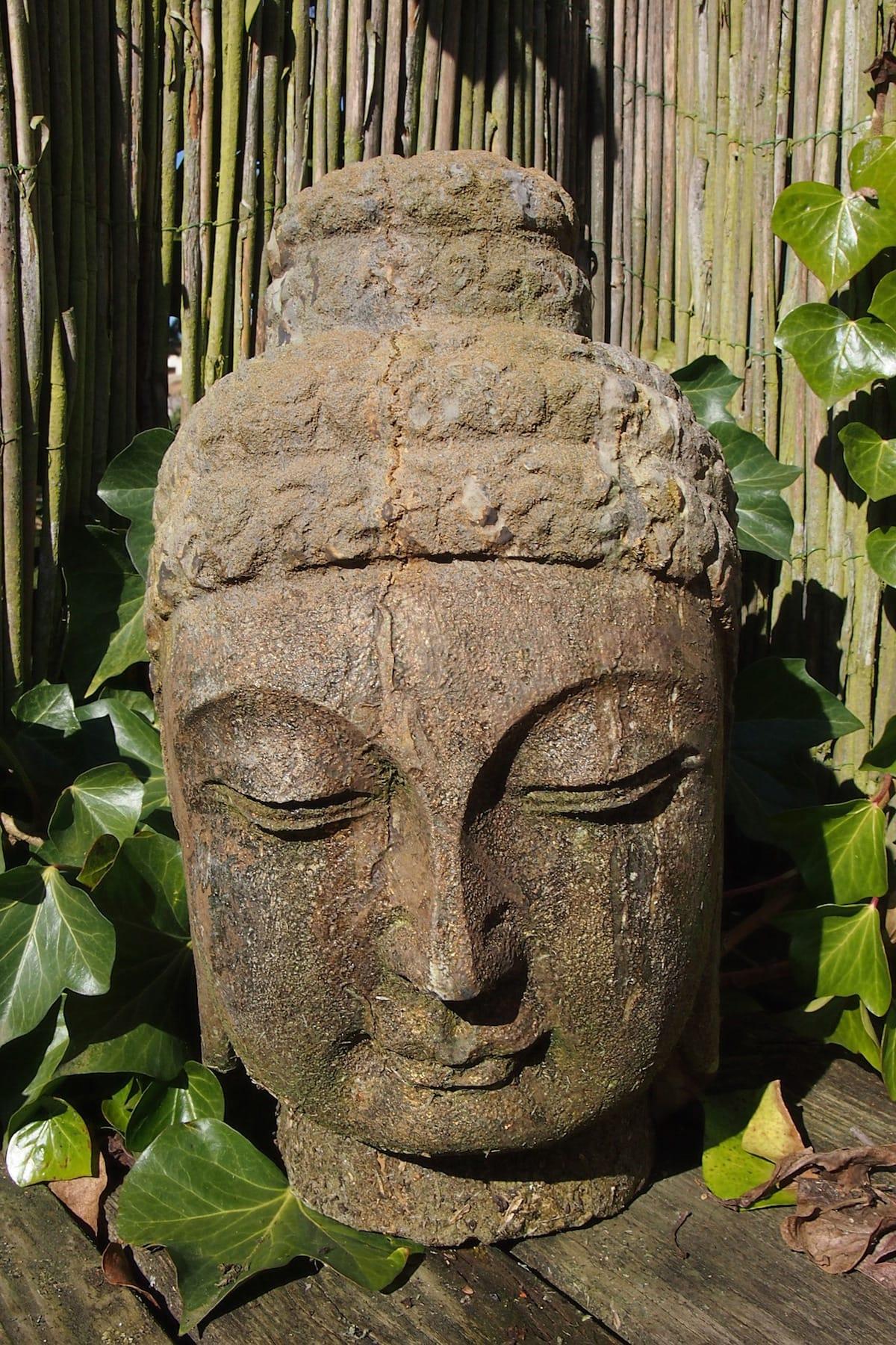Shambhala Sun, Cheerfulness, Happiness, Sakyong Mipham, Vajrayana / Tibetan Buddhism, Lion's Roar, Buddhism