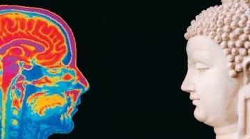 dalai lama neuroscience neuroplasticity mind and life institute science brain buddhism francisco varela eleanor rosch