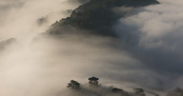 Pagoda in the mist.