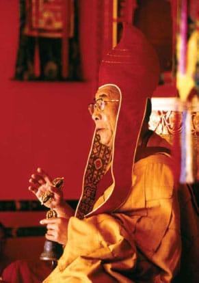 many faces of the dalai lama shambhala sun barry boyce Lion's Roar religious leader