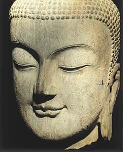 buddha-by-taylor