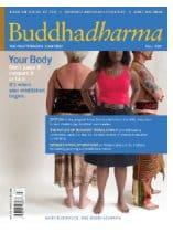 buddhadharma-fall09cover