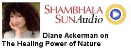 audio-sunspace-ackerman