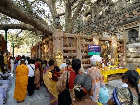 Pilgrims at the Bodhi Tree in Bodhgaya