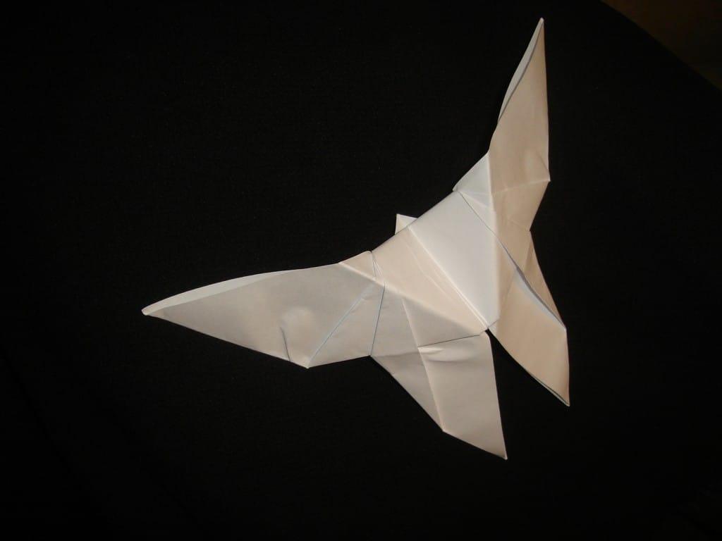 Design Project 3: Origami Butterfly Video - Langston Wells - Medium | 768x1024