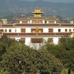 Profile: Rangjung Yeshe Institute