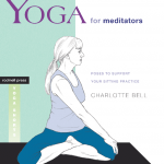 """Yoga for Meditators"" teaches you tadasana, or ""mountain pose"""