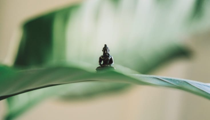 Buddha statue on leaf