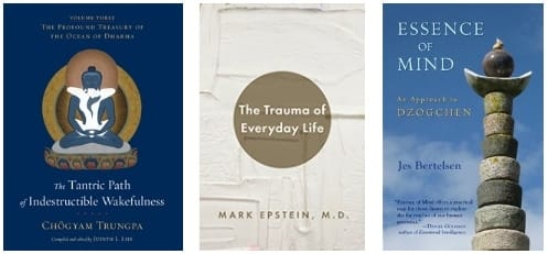 Best Buddhist Books of the summer: The Profound Treasury, The Trauma of Everyday Life, The Essense of Mind