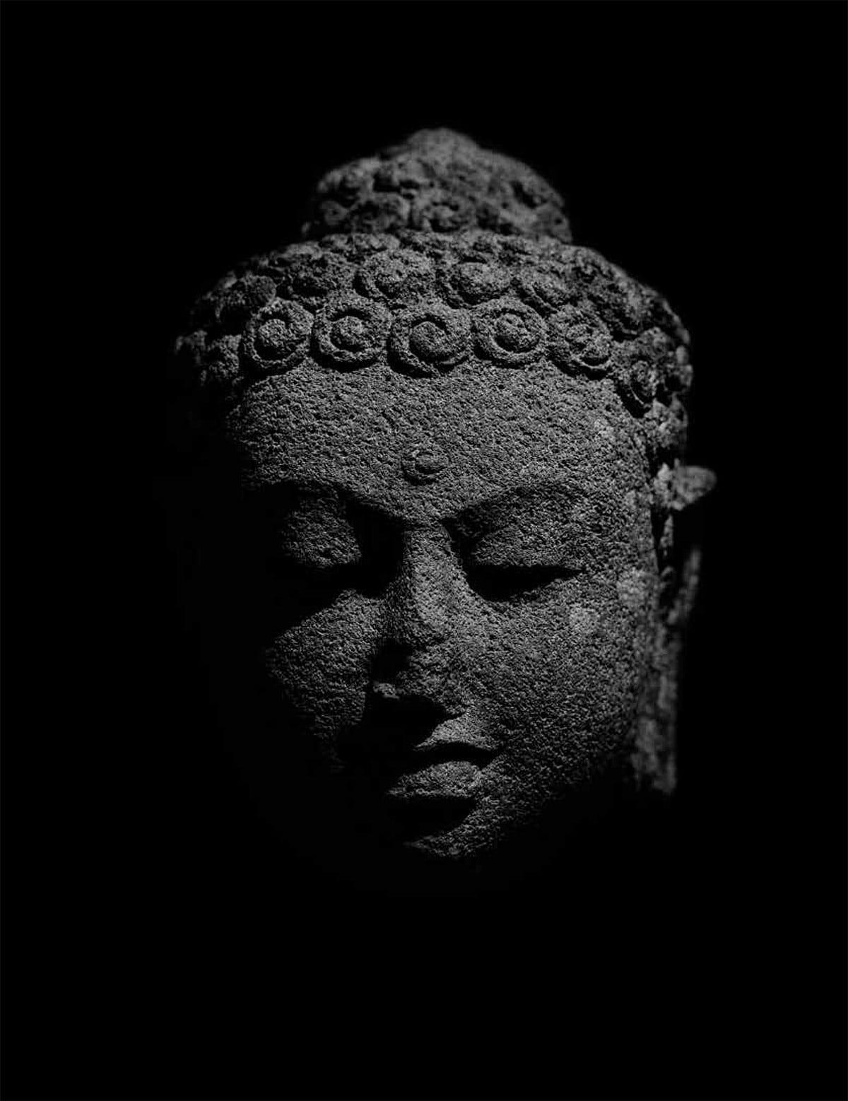 Buddha Satipatthana Sutta Joseph Goldstein Buddhadharma Mindfulness Lion's Roar BUddhism