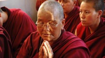 Nuns Expelled Tibet News Buddhist Lion's Roar