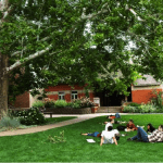 Naropa University seeks Professional Development and Extended Studies Director