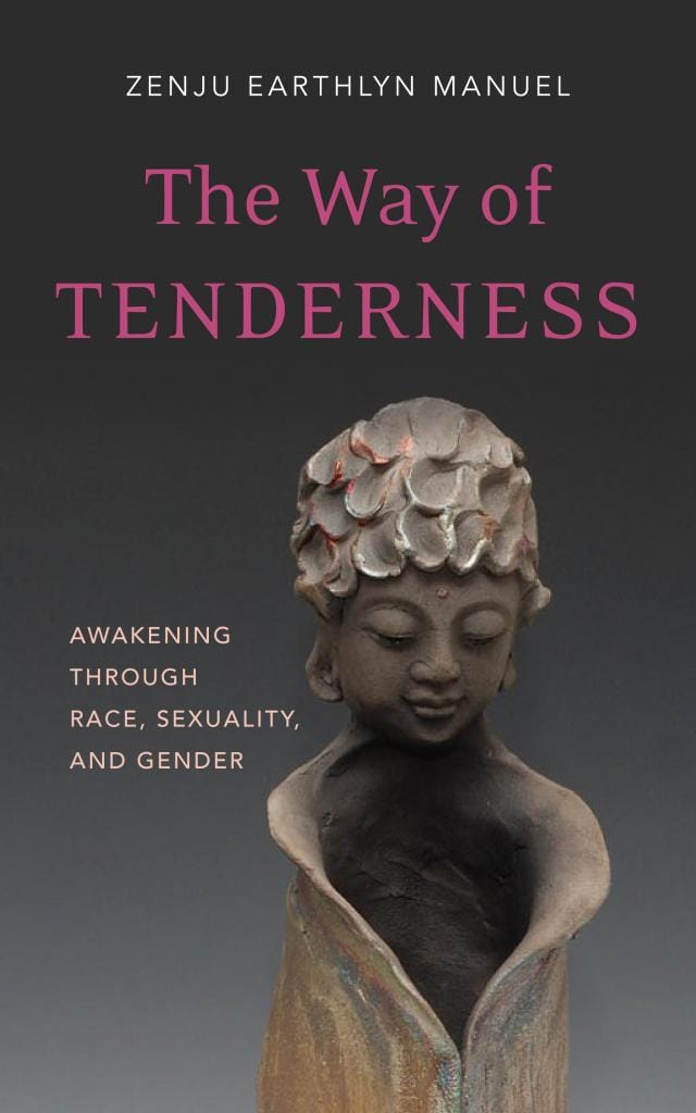 The Way of Tenderness Excerpt Wisdom Publications Race Sexuality Gender Awakening