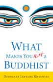 What-Makes-You-Not-a-Buddhist