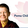 Pema Chodron Sounds True Online Teaching How To Choose Freedom Different Course