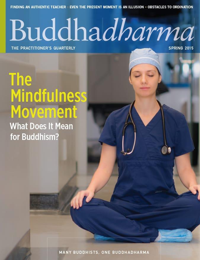 Buddhadharma Spring 2015 Mindfulness Lion's Roar