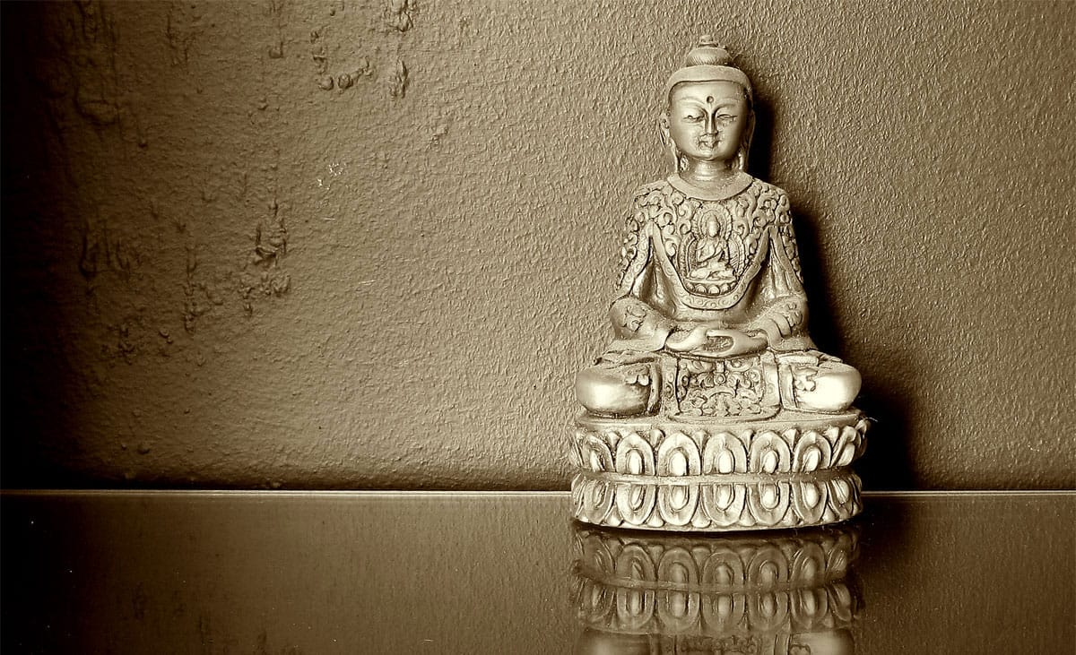 Buddha Share Your Wisdom Best Thing Buddhism Has Done for You