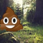 The Tao of Poo
