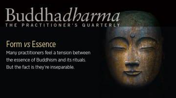 buddhadharma summer 2015 form versus essence cover