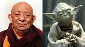 Tsenzhab Serkong rinpoche yoda Buddhism Dalai Lama tutor debate partner Lion's Roar news Star Wars the Force jedi