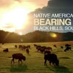 Bearing witness to the genocide and suffering of Native Americans