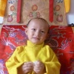 Trulshik Rinpoche's successor recognized