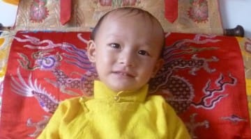 trulshik rinpoche, reincarnation, rebirth, dilgo hhyentse rinpoche, dalai lama, lion's roar, news, buddhism