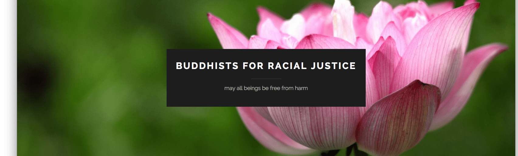 buddhists for racial justice, website, open letter, angel kyodo william, tara brach