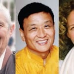 Ask the Teachers: How can I engage with emotions in a way that turns me towards the Dharma?