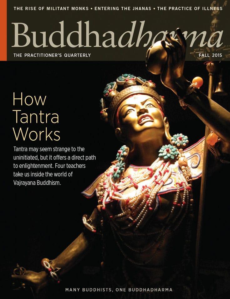 buddhadharma, fall, 2015, magazine, lion's roar