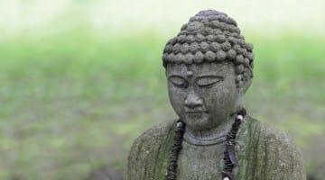 omega, buddha, waking up, sylvia boorstein, tsoknyi rinpoche, melissa myozen blacker, shambhala sun