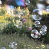 "Watch Sharon Salzberg's ""Bubble Meditation"""