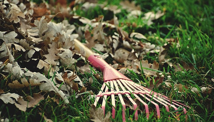 Do Dishes, Rake Leaves: The Wisdom of the Ancient Homemakers