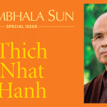 Inside the January 2016 Shambhala Sun magazine