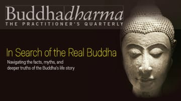 Buddhadharma, Buddha, Winter, 2015, Lion's Roar