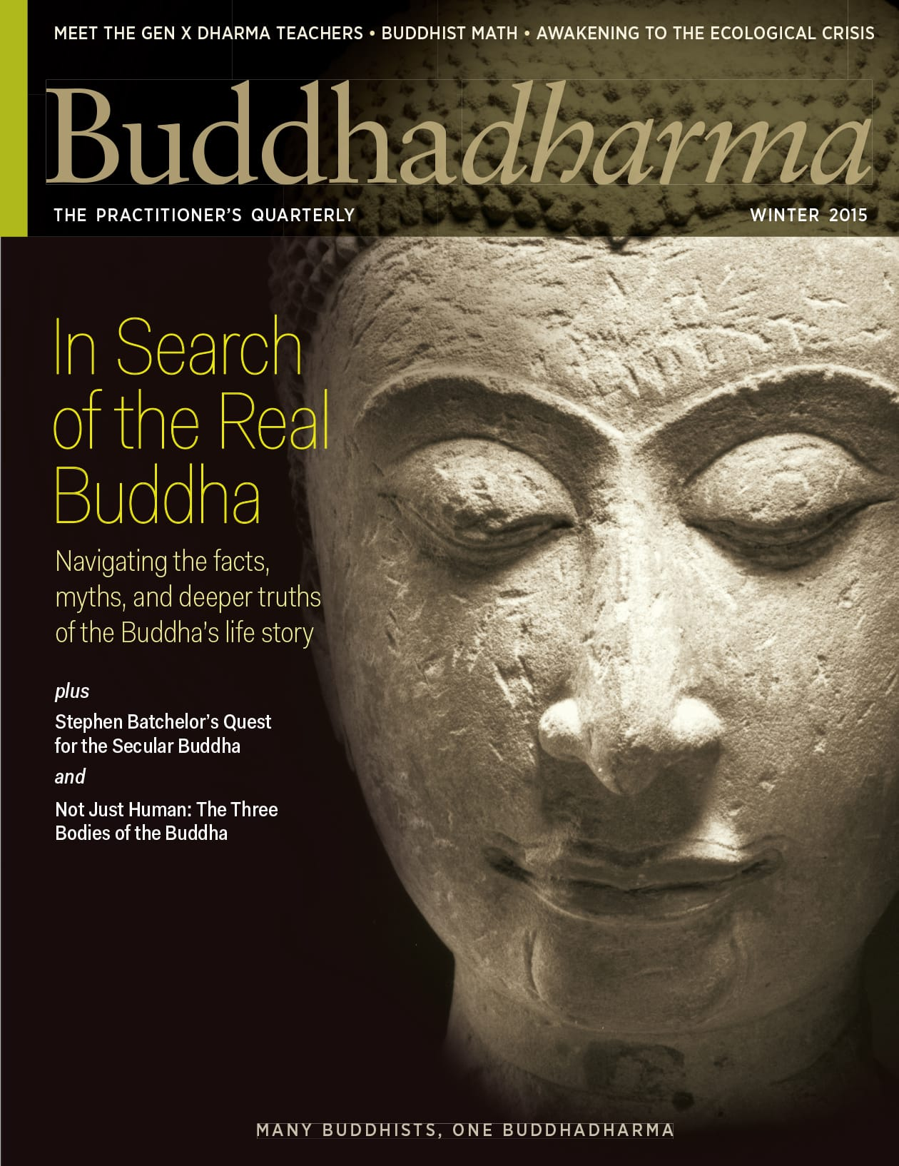 Buddhadharma, Buddha, Winter, 2015, Lion's Roar