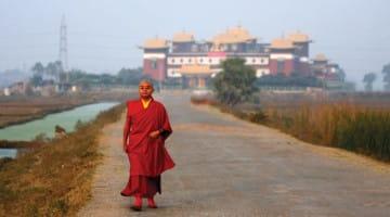 mingyur rinpoche, lion's roar, shambhala sun