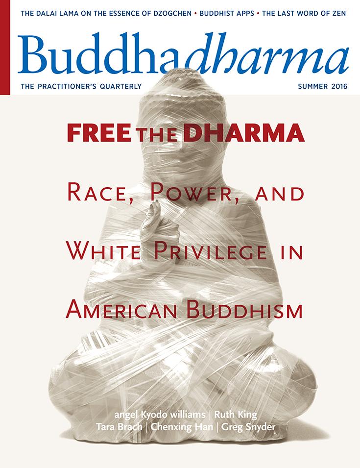 Buddhadharma-Summer-2016-Cover
