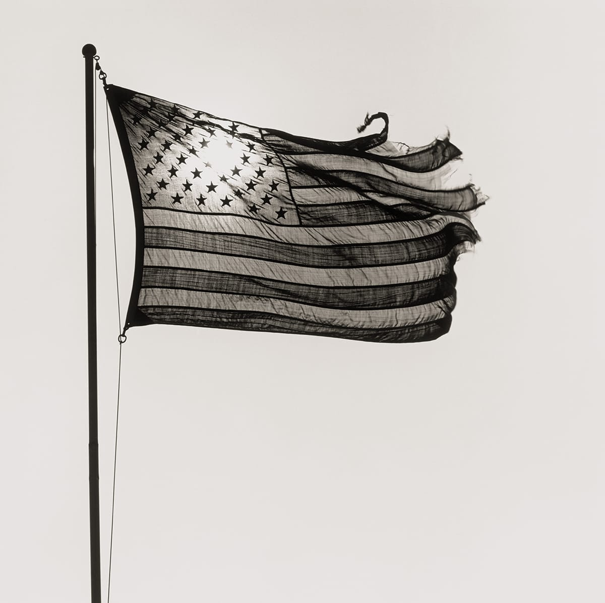 American Flag, 1977 by Robert Mapplethorpe.
