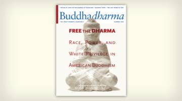 "Buddhadharma Cover, ""Free the Dharma."""