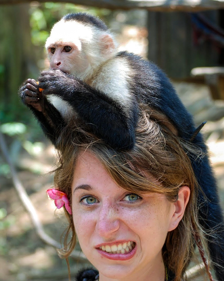 A monkey sits on a girl's head.